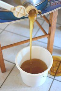 miel de Normandie