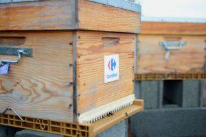 Ruches uibie apiculture