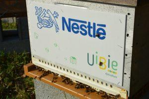 Uibie Nestle