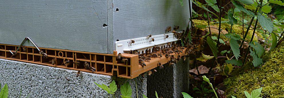 parrainage apiculteur Calvados
