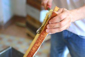 apiculteur calvados miel
