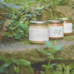 Miel de l'apiculteur