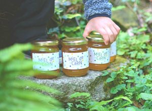 apiculteur Calvados, miel de Caen